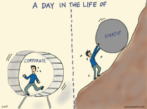 startup vs corporate