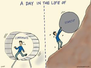 startup vs corporate